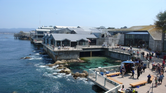 "Early arrival students can opt for a field trip to the Monterey Bay Aquarium, whose mission is ""to inspire conservation of the oceans."" Public domain photo."