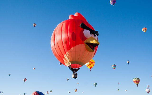 Don't be an angry bird — be an early one!